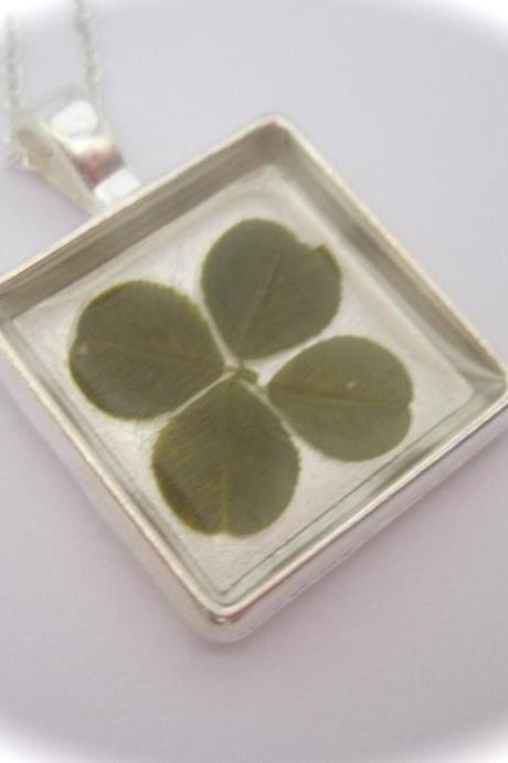 A lucky four leaf clover Memory Necklace