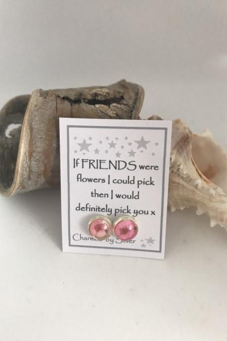Available for immediate despatch - dried flower earrings with a message for a Friend x