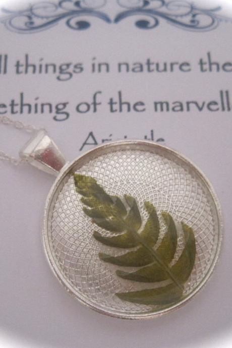 A beautiful green Cannock Chase fern Memory Necklace