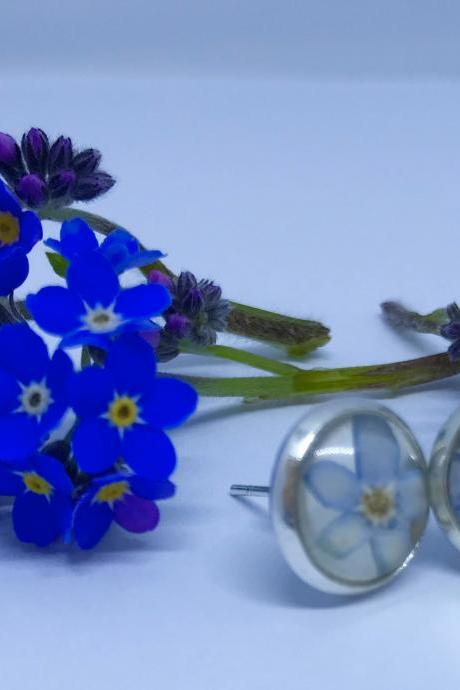 Memories of Flowers - forget-me-not flower earrings with a beautiful message