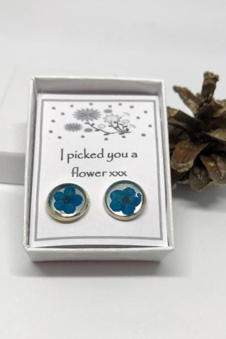 I picked you a flower - blue dried flower earrings