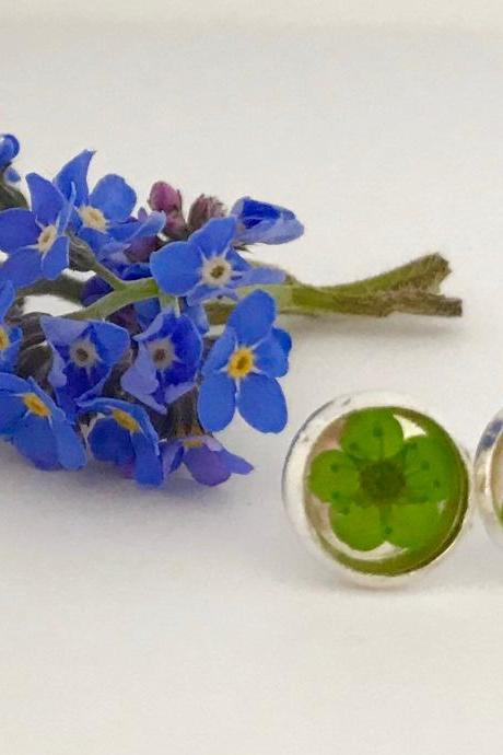 Available for immediate despatch - green or red dried flower earrings with a message